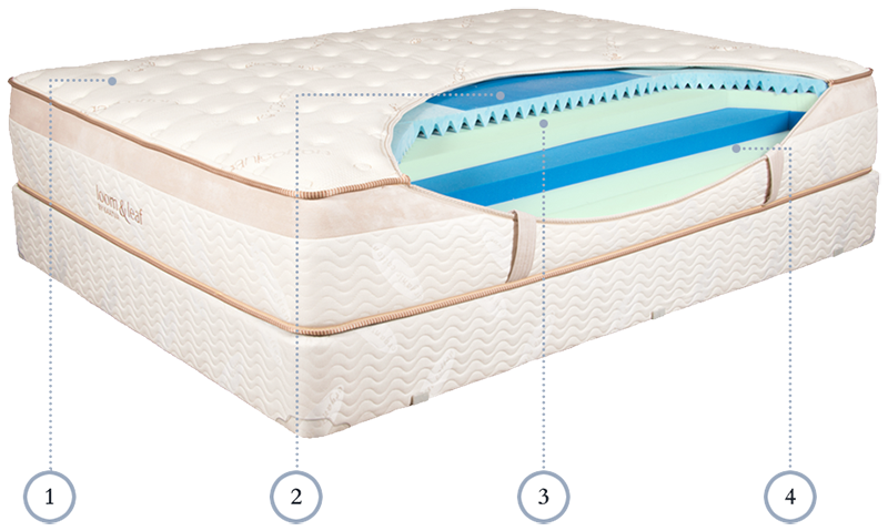 cross section of Loom and Leaf mattress interior layers